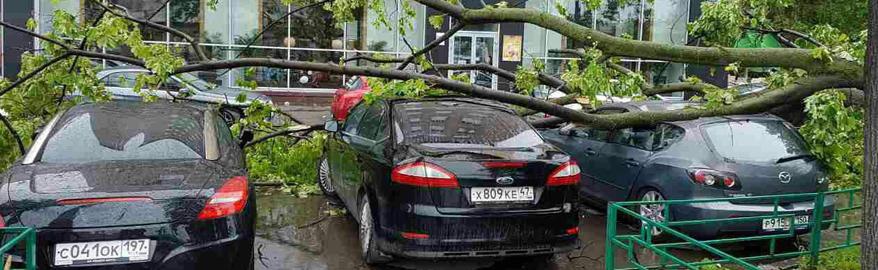 Столичных водителей предупредили о приближающемся граде