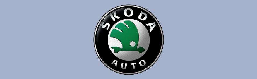 Новый Skoda Karoq сняли на видео