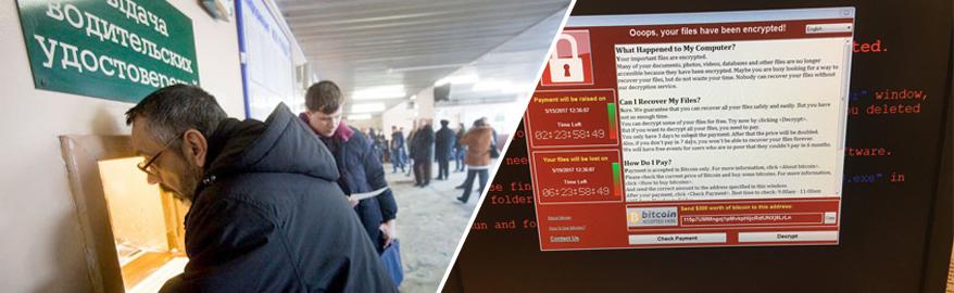 Компьютерный вирус заблокировал выдачу прав в России